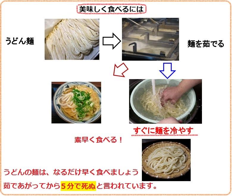 美味しいうどんの麺